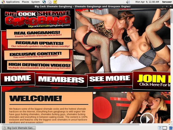 Discount Bigcockshemalegangbang.com Link
