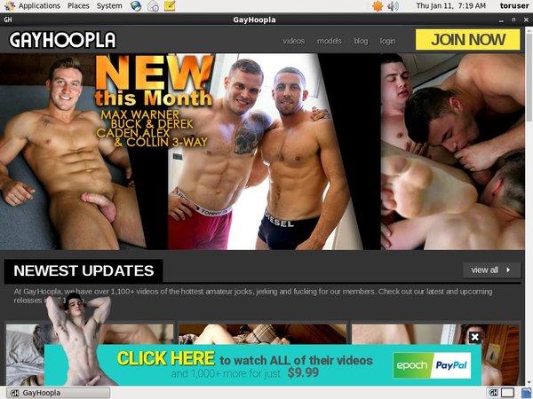 Gay Hoopla Trial Cost